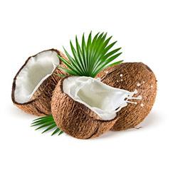naturkosmetik-mit-kokosoel