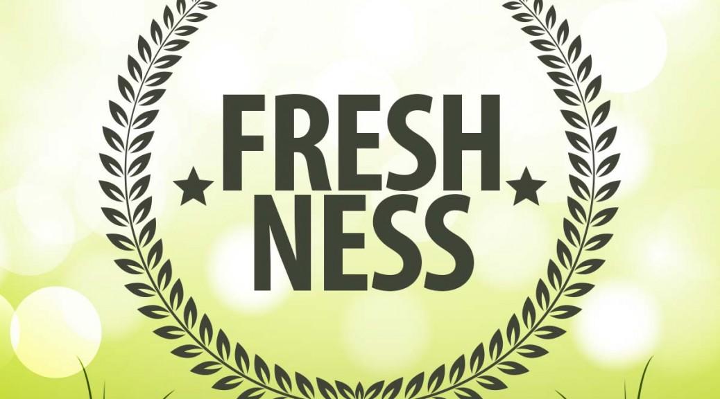 xovilichter-seo-tipp-freshness